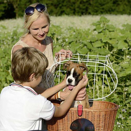 Doggy Basket Plus -5