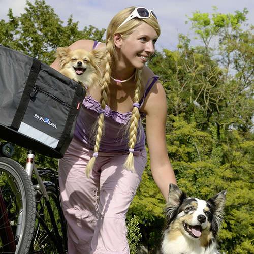 Doggy Shopper -10
